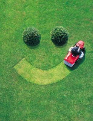 Thomas Novak Lawn Services